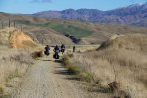 Otago Central Rail Trail 23