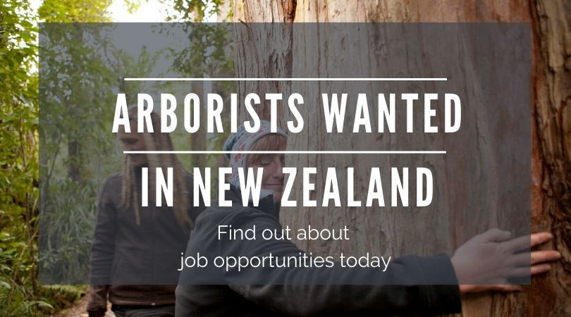 work in new zealand as an arborist