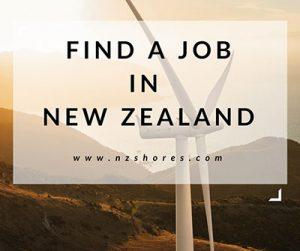 find a job in nz