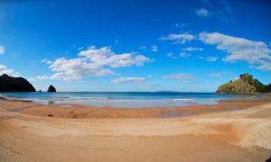 new-chums-beach-21531271