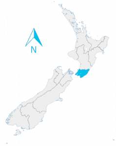 new zealand wellington map