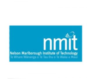 nmit-1-300x272